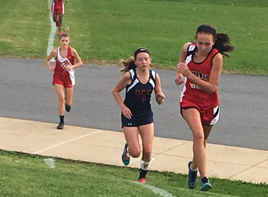 More Records for Cardinal Runners at Punxsy