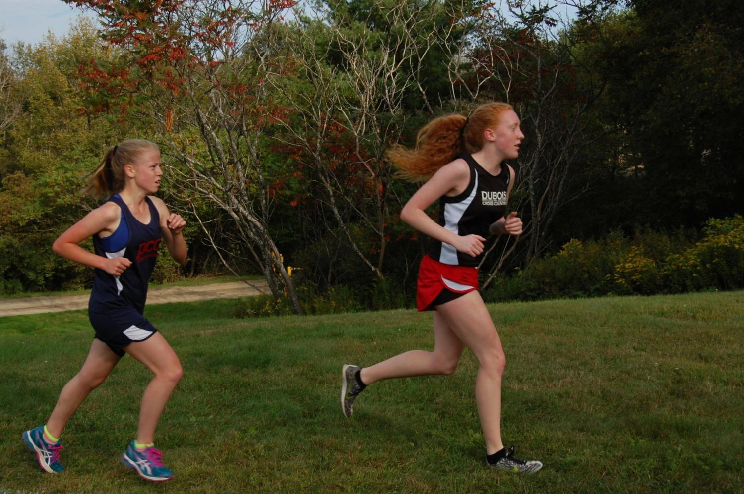 DCC CARDINALS OUTRUN BROCKWAY IN CROSS COUNTRY MEET - ENDS 34-YEAR SLUMP