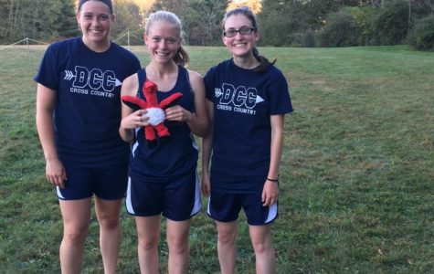 RECORDS FALL FOR CARDINAL RUNNERS ON SENIOR NIGHT
