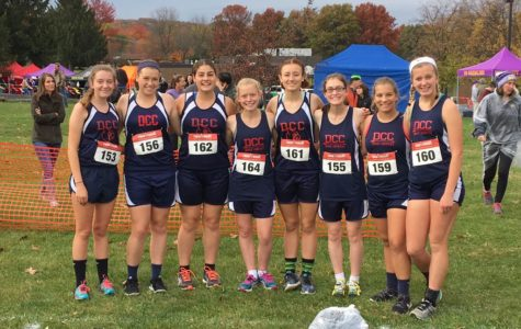 Historic Day for Cardinal Cross Country at Districts