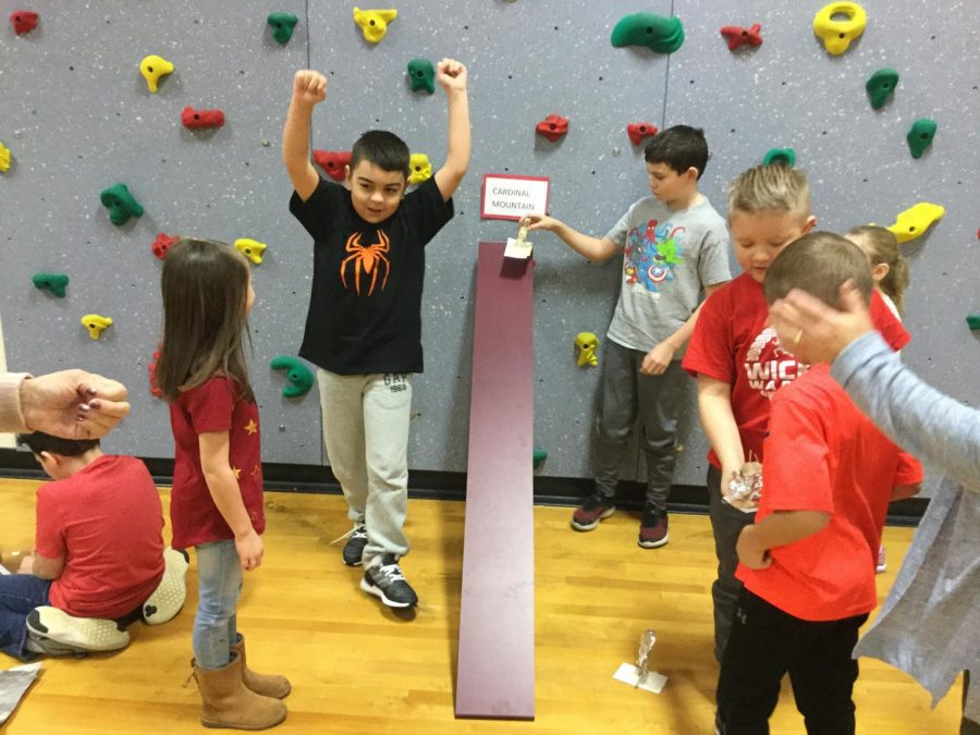 STEM Activity - Designing Skiers Who Can Take on Cardinal Mountain