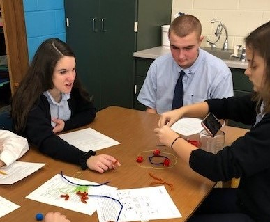 DCC 9th Grade uses Stop-Motion to Learn Mitosis