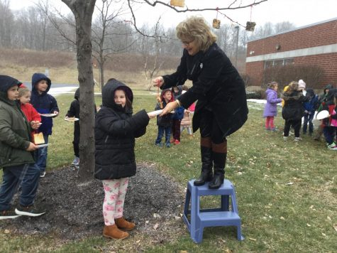DCC Kindergarten Feed their Feathered Friends