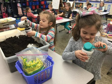"""Kindergarten Made """"Grass Guys and Girls"""" to Learn About the Letter G"""
