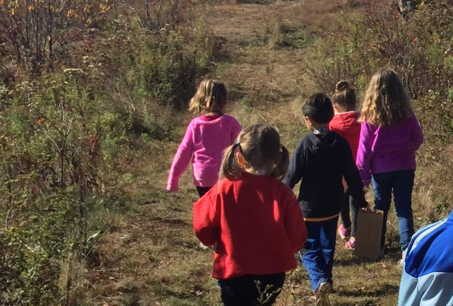 DCC Kindergarten Learns about Leaves and the Fall Season