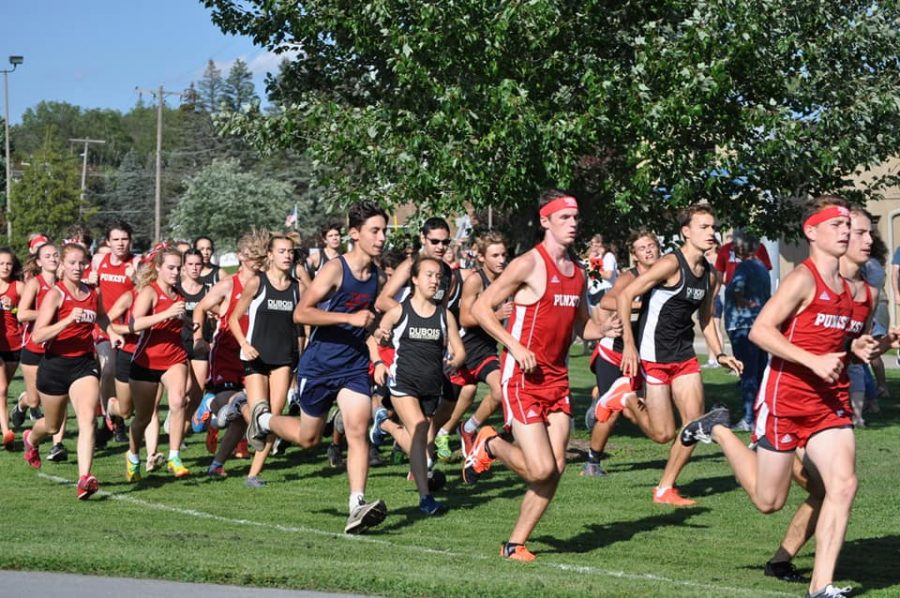 Cardinals Have Good Showing at ECC Quad-Meet for Cross Country